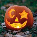 pumpkin.pumpkin
