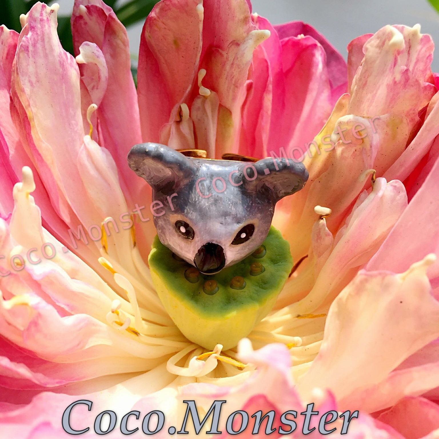 coco.monster