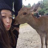 allison_chan