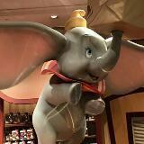 elephant_p