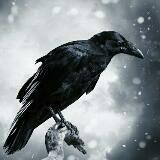 ravencrowley