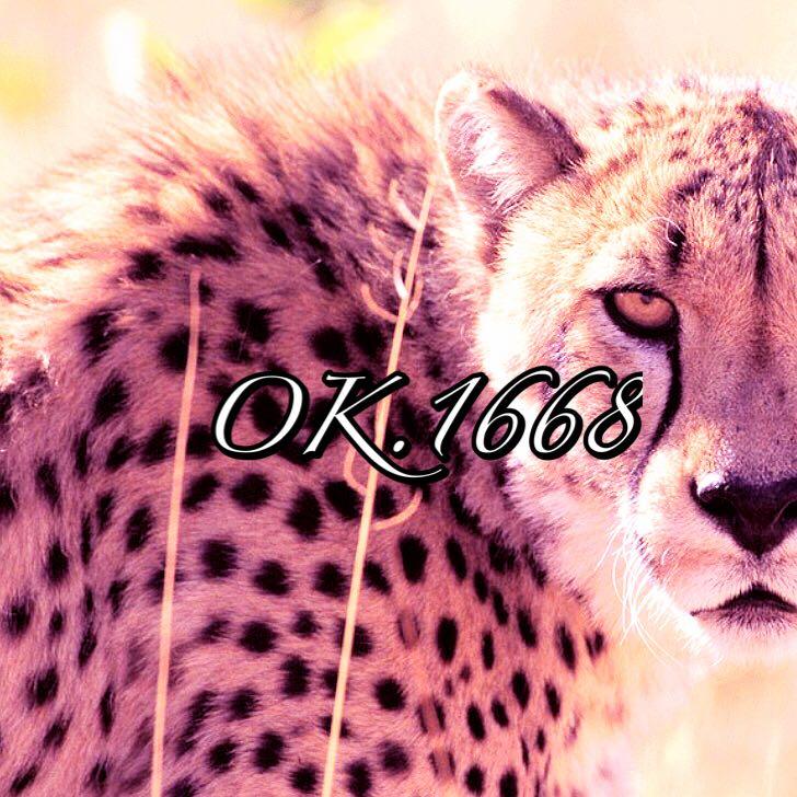 ok.1668
