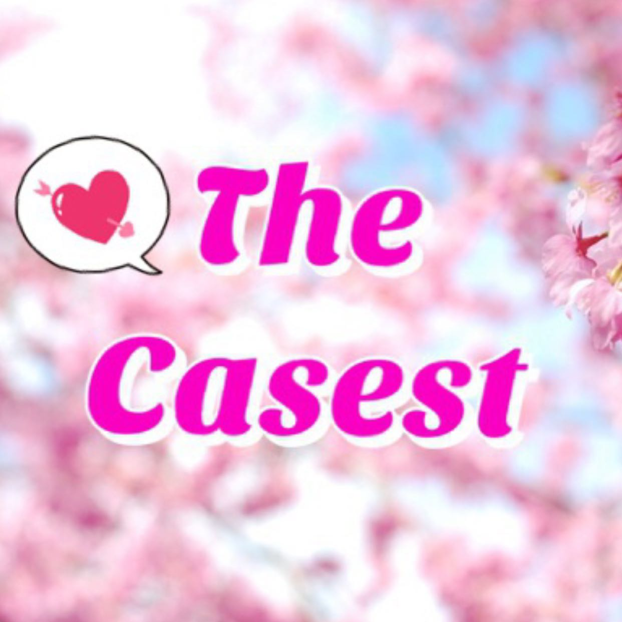 the_casest