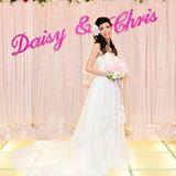 daisy1hk