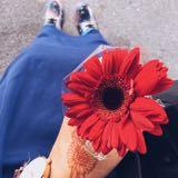 bloominglitz