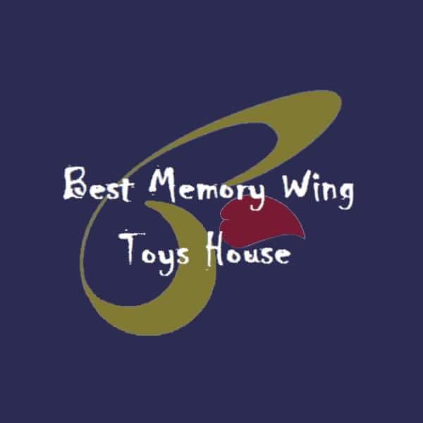 bestmemorywingtoyshouse