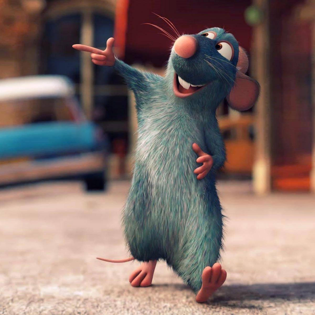 ratcancook