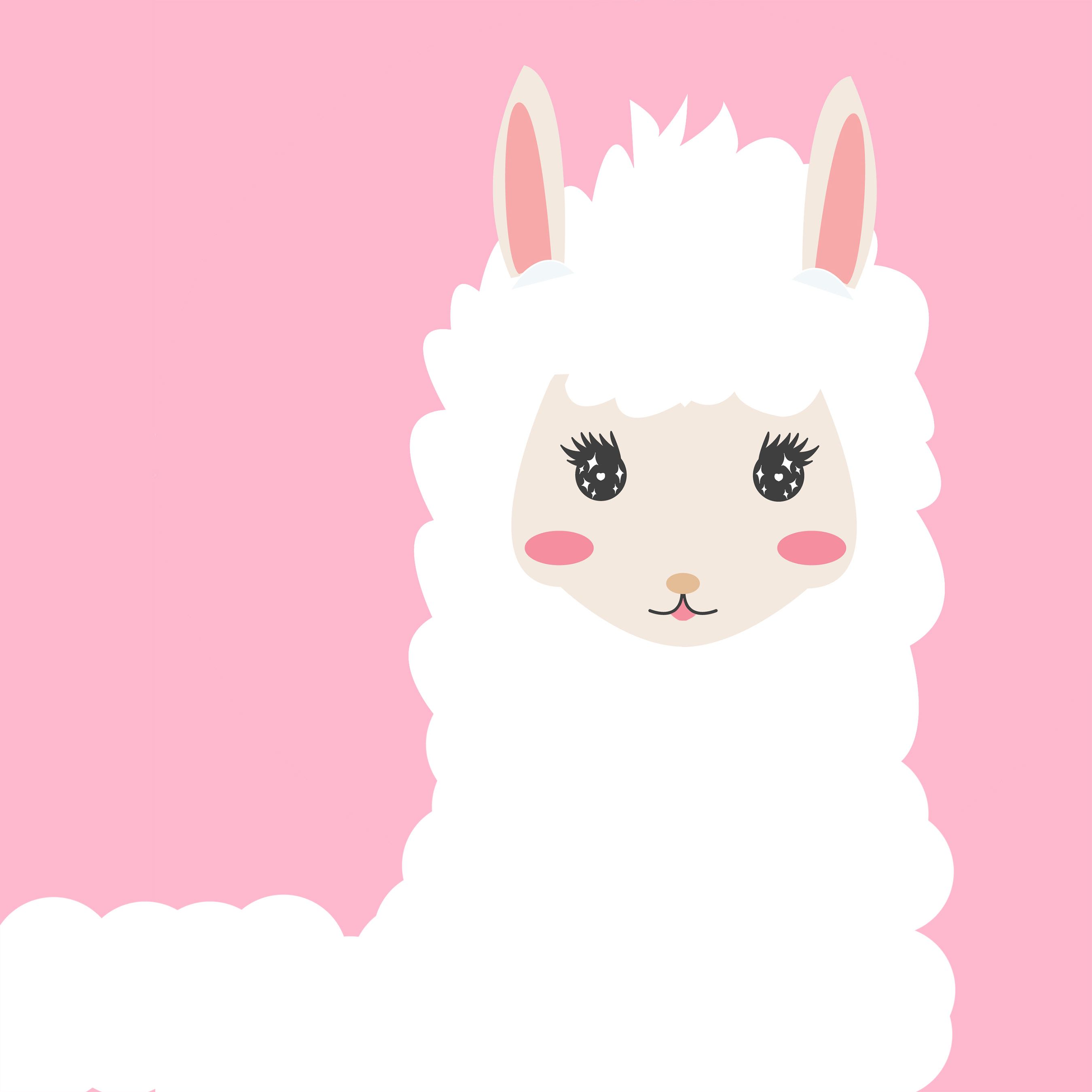 beautyllama