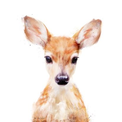 11.deers