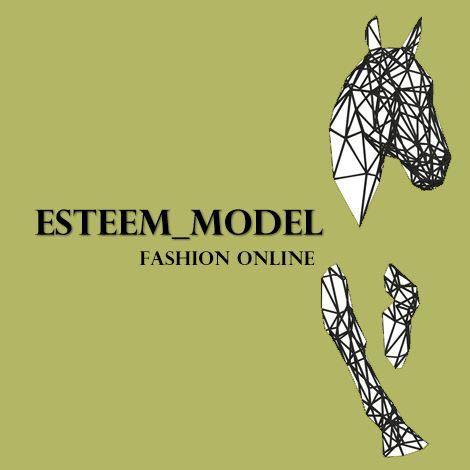 esteem_model