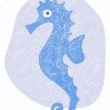blueseahorse