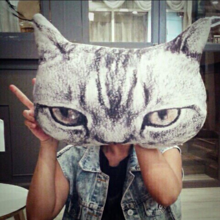 thecatcats