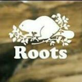 sealroots