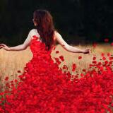 petalsbeauty