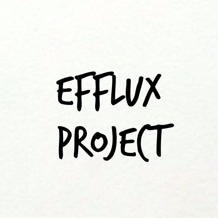effluxproject.id