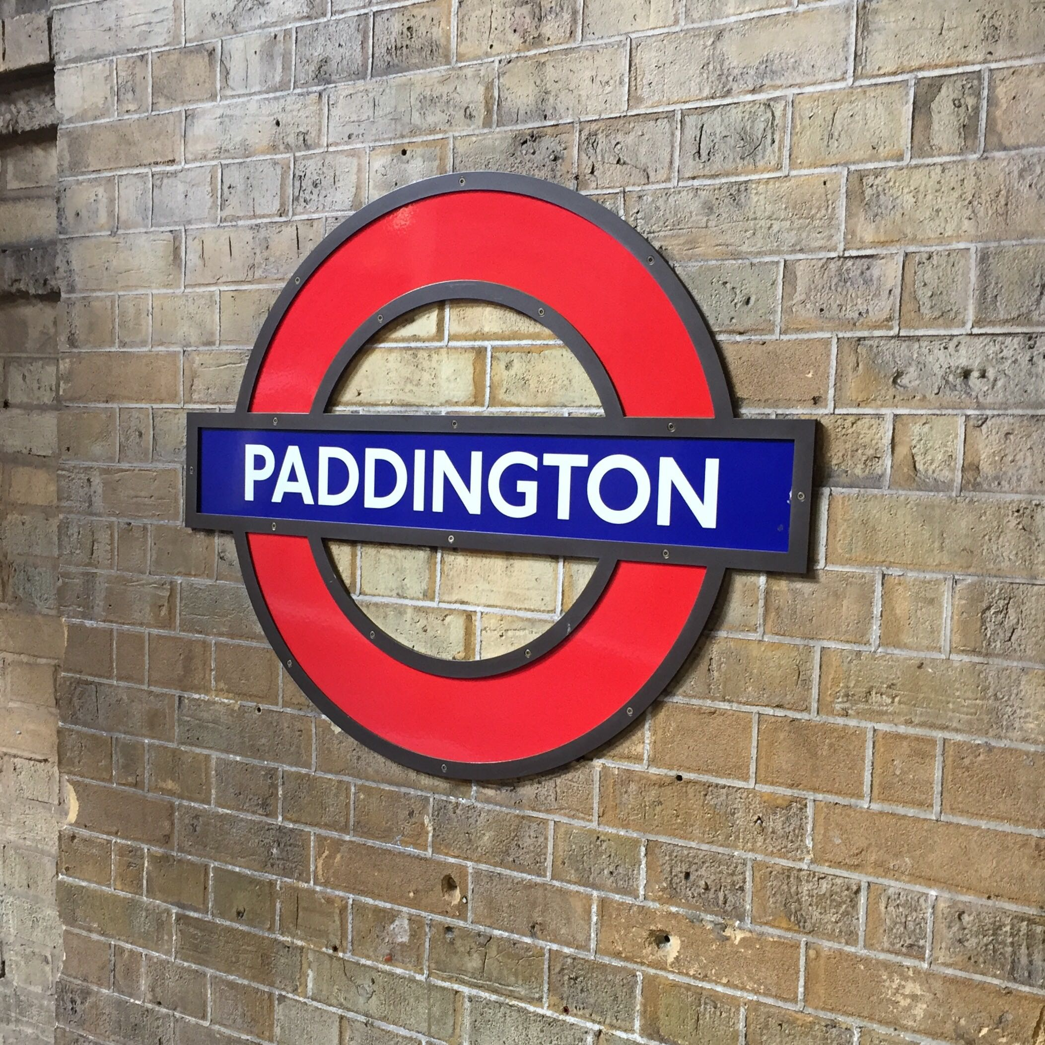 paddington_bear