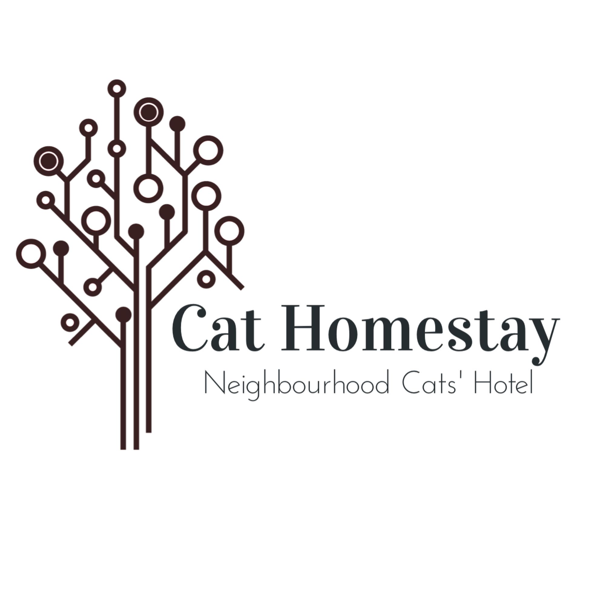 cat_home_stay