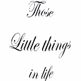 thoselittlethingsinlife