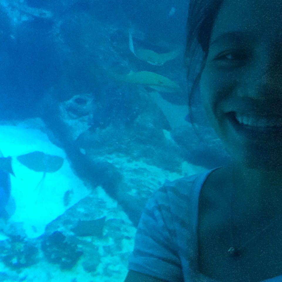 aquaticpanda