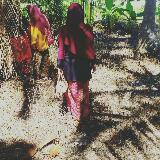 mysara_halim