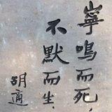 wilsonchoi