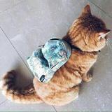 peanutbag