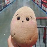potatouser3