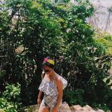 tropicalpingu