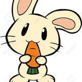 bunniesvintage