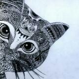 jicats_ja