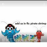 pirateshrimp