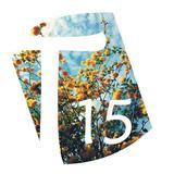 t15_designs
