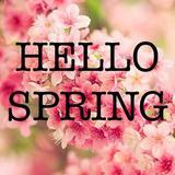 hello.spring.boutique