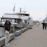 parisa_moghaddam1354