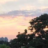 kwongcandy