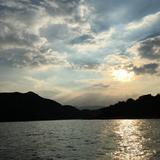 taylor_cheung