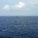 winds0331