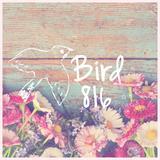 bird816