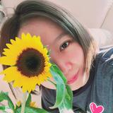 sunflower2004