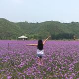 2ndhandparadise