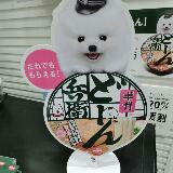 michiyo_pp