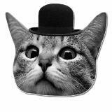 snappycat