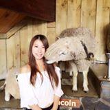 mini_minmie