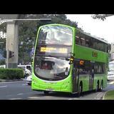 sg_bus_lover