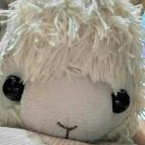 sheepppppppp