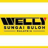 wellyaccessories