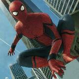 spider_yan