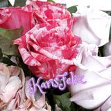 karis_feliz