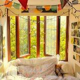 sari.bookshelf
