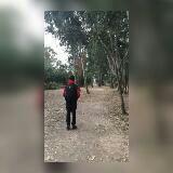 yimto